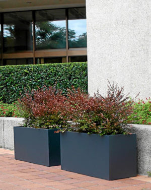 Trough Planter Boxes - Rectangle Shaped Garden Planters